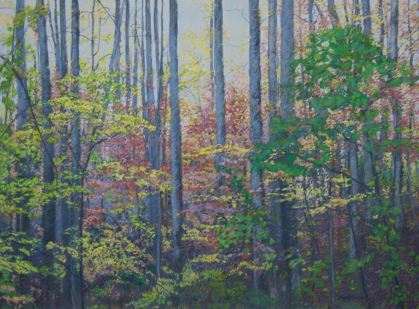"""Autumn Morning""   24"" X 32""   pastel on panel"