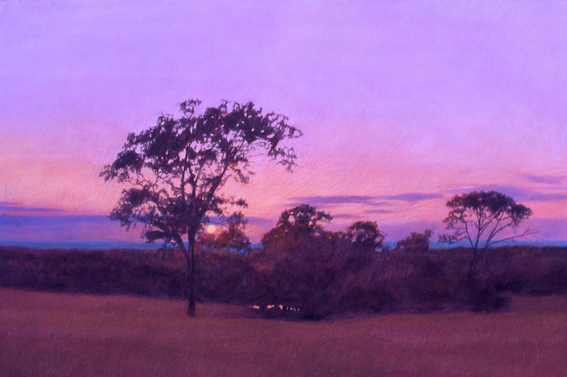 """San Augustine At Sunset""    22"" X 30""   pastel on paper"