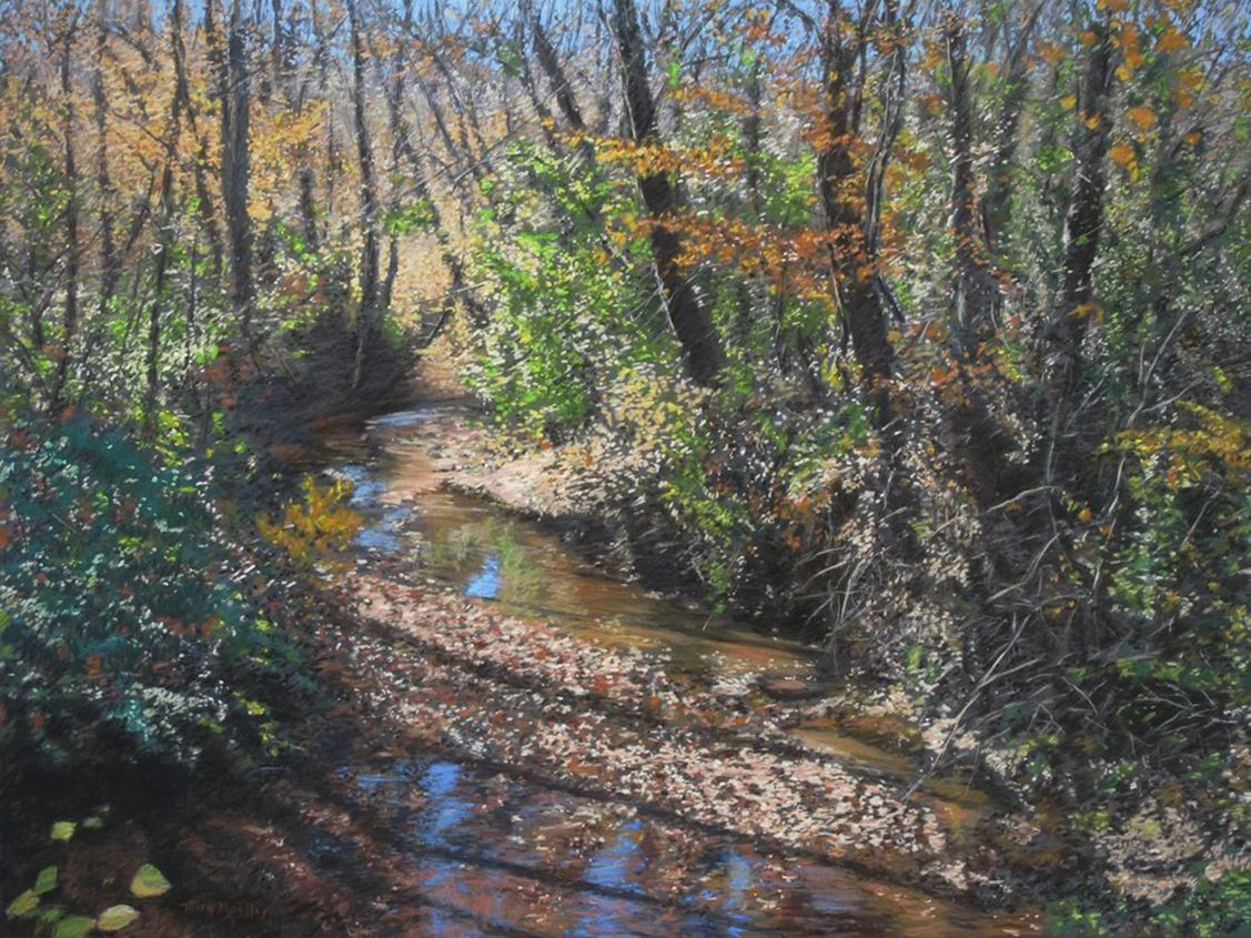 """Sunlight on a Woodland Stream # 2""     24"" X 32""    pastel on panel"