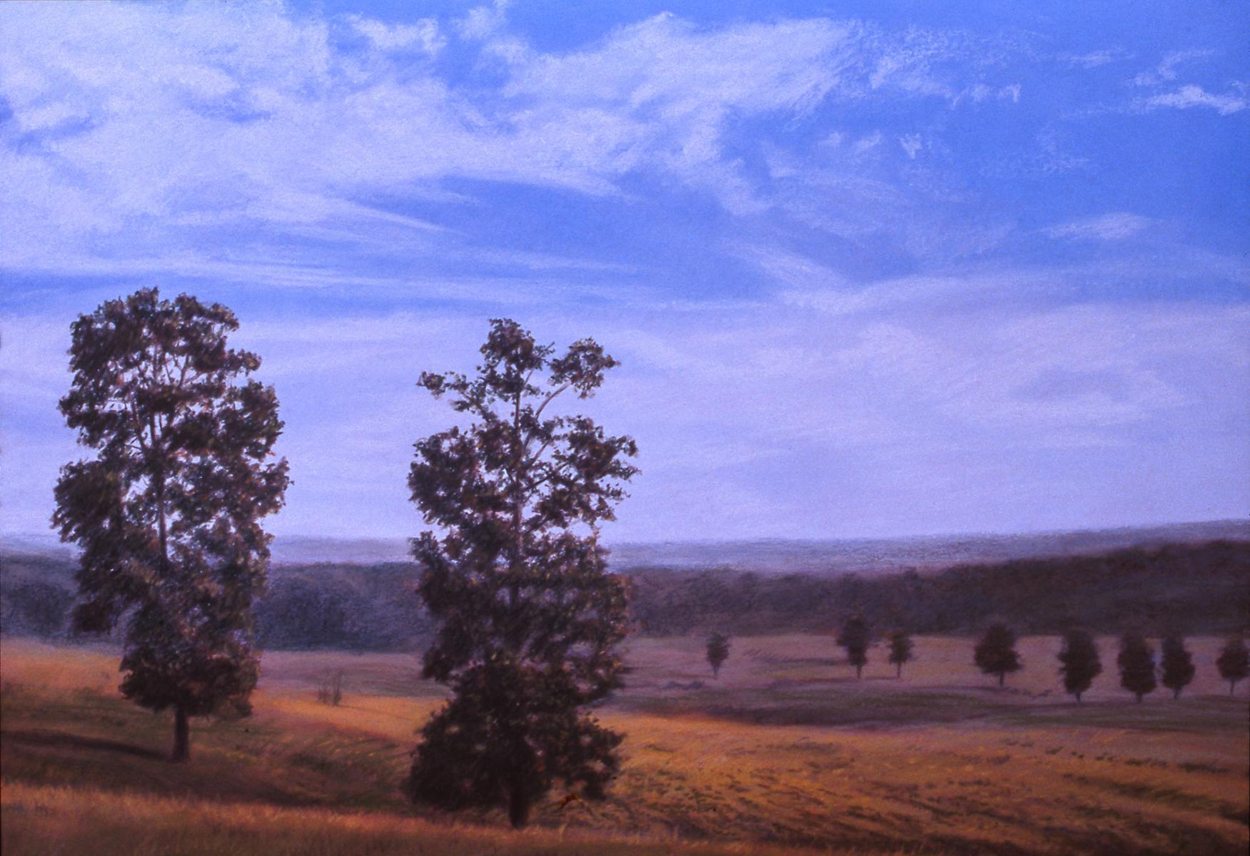 """Late Summer Landscape""    22"" X 30""   pastel on paper"